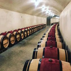 Cave Tour at checkerboard Vineyards #nap