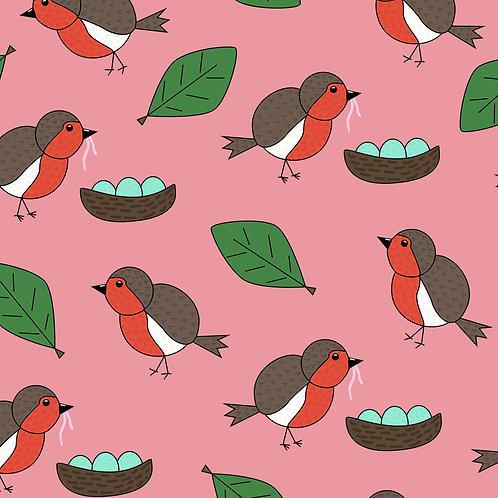 Robins, Blush