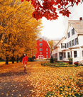 FallVermont.PNG