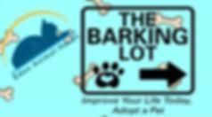 barking lot cropped.JPG