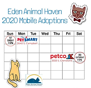adoption calendar (1).png