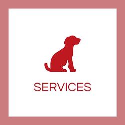 puppy-classes-lewisham.png