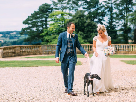 The one with the Whippet!