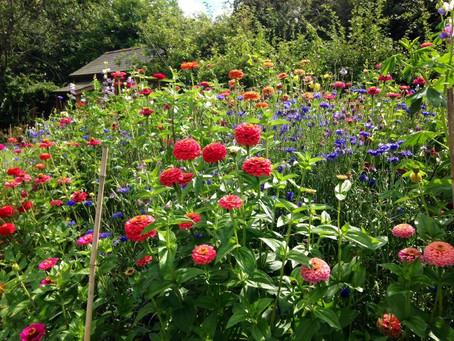 Summer Wedding Flower Inspiration – Down at the bottom of the garden!