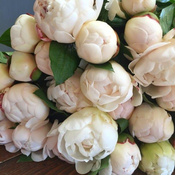 Bristol | Florist | Weddings | Flowers | Bath | Cotswolds