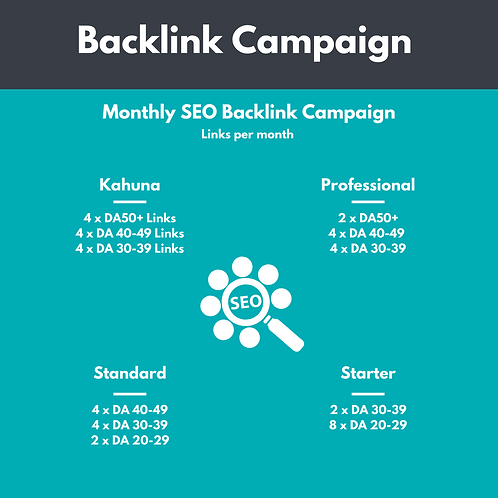 SEO Backlink Monthly Campaign