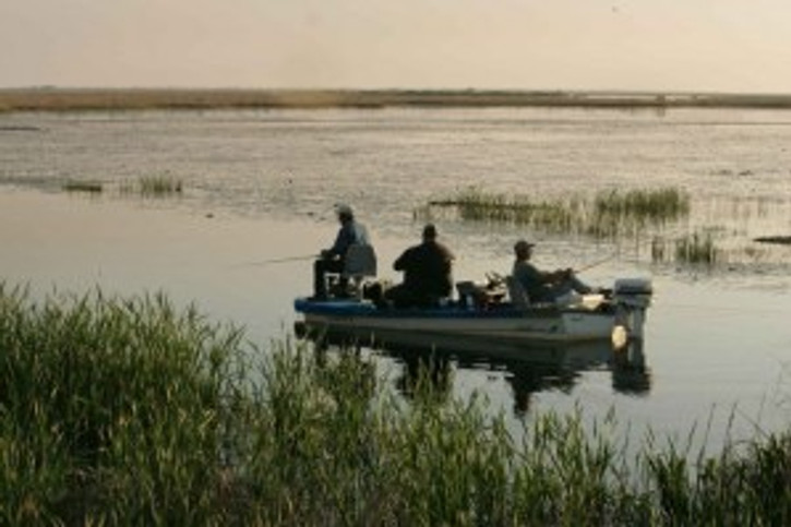 Three men in bass boat spending a relaxing late afternoon fishing in quiet water by Hillebrand Steve, U.S. Fish and Wildlife Service