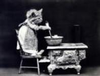 cat-dressed-vintage-photo-