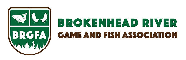 BRGFA Logo.jpg