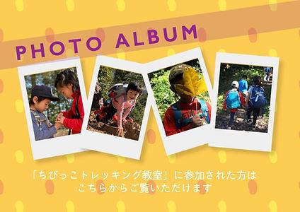 photoalbum_edited_edited.jpg