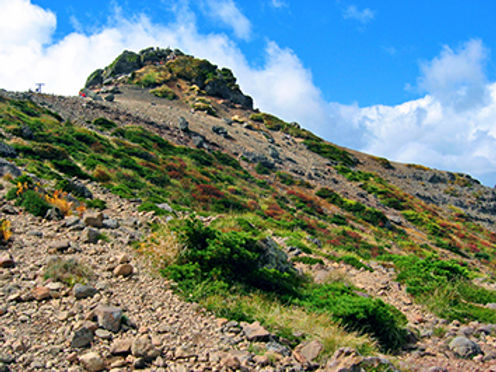 ツツジの名所・花の群生「安達太良山」