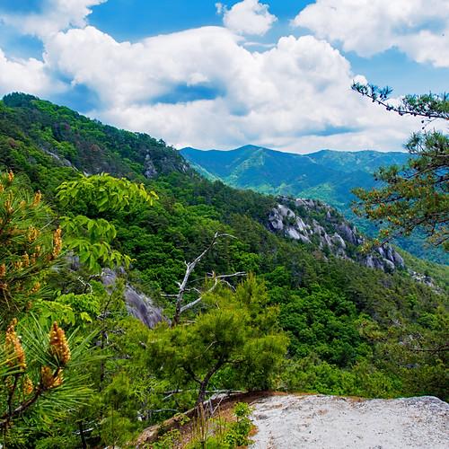 低山トラベラーと征く 低山再発見の旅 #6「羅漢寺山」