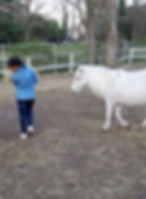 Young Volunteer and Pony