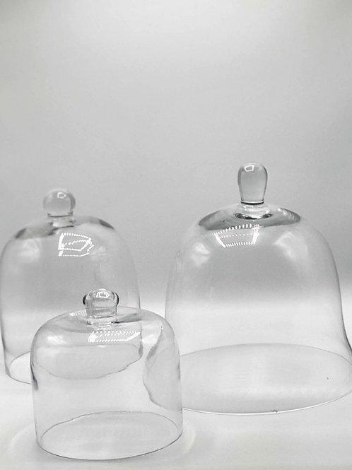 Domes & Bell Cloche