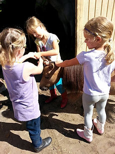 Young girls playing with pony