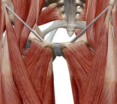 股関節が痛むと仰る方の施術。