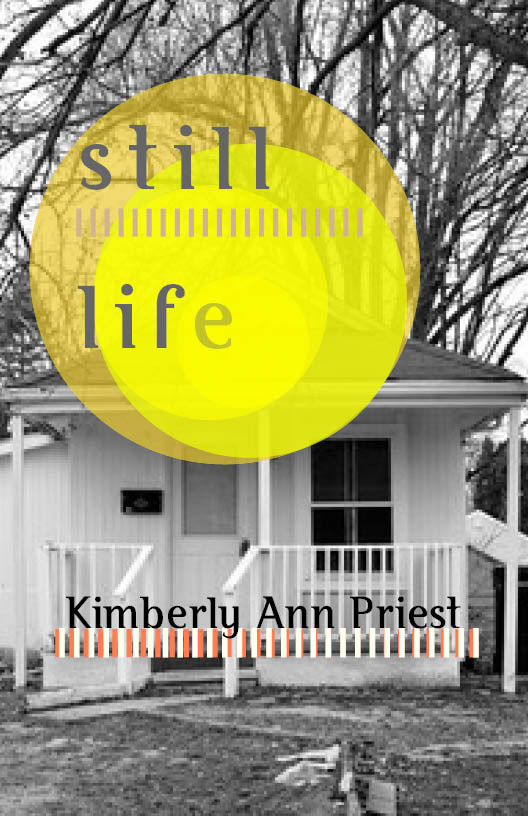 Review of STILL LIFE in Rhino