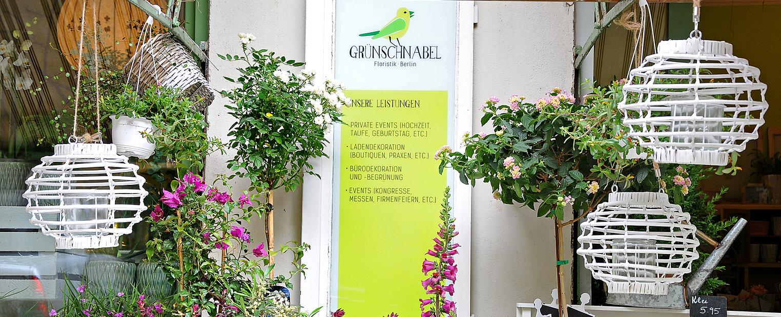 Pflanzen, Terrassenbepflanzung, Begrünung, Blumen, Hortensien, Garten, Erde, Events, Messen, Kongresse