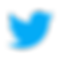 icons8-twitter-480.png