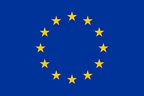 european%20flag_edited.jpg