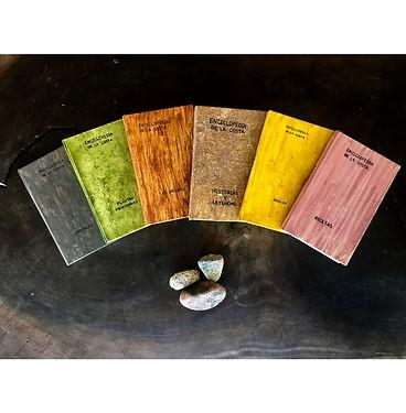 Arq_Enciclopédia_dos_saberes_locais_Onl