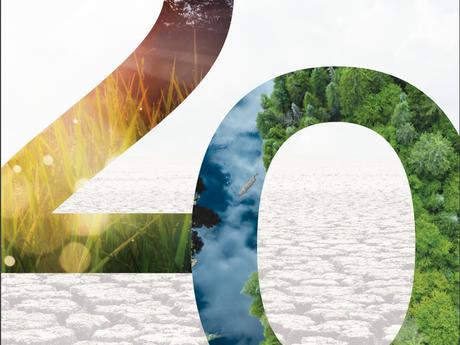 IETA's 2019 Greenhouse Gas Market Report