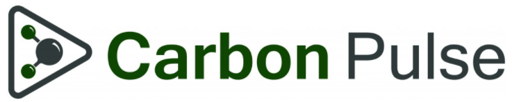 Clearblue Markets Managing Director of Origination Michael Berends quoted in Carbon Pulse Article
