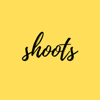 Discover Our Shoots