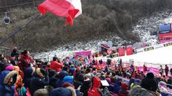 Jeongseon2016(10)