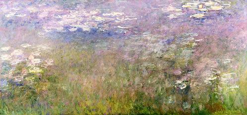 NINFEE - 1915/26