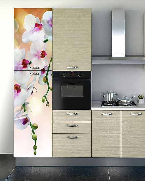 Rivestimento frigorifero Art. 7