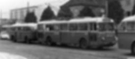 o-bus 09.jpg