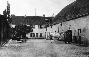 Pferde für die Tram im Löwenhof 1896 ArchivFMTM eV. münchen tram pferede pferdetram
