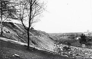 1950_Neuhofer_Schütt.jpg