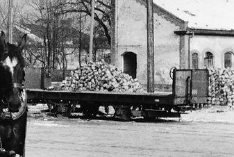 Betriebsnummer 889 vom Typ q 7.1am 02.03.1951 München Tram