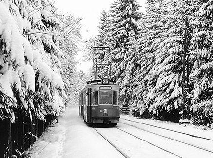 M3-Tw 788 + Bw in Neugrünwald auswärts 1965 münchen tram