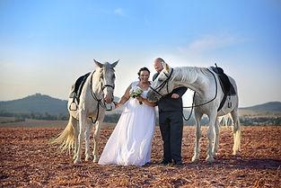 svatební fotografování s koňmi