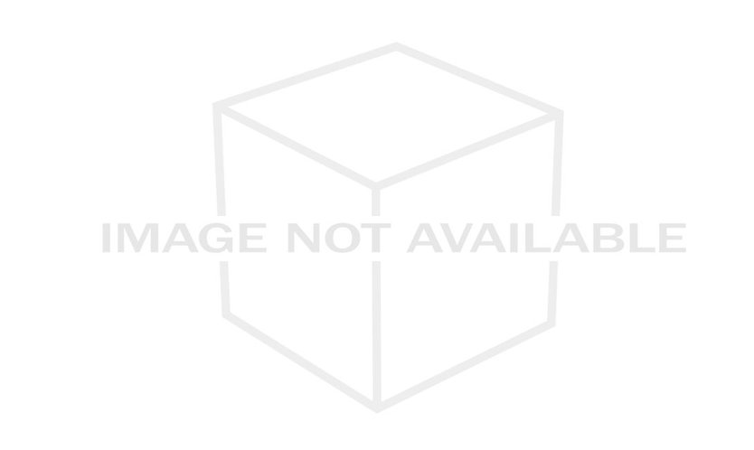 ALPECIN TEAM  透氣短袖單車衫