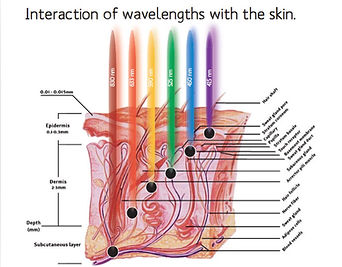 LED-Therapy-Image.jpg