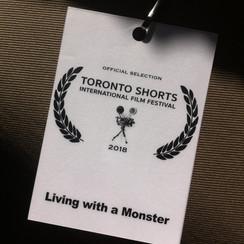 TorontoShorts3.jpg
