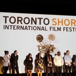 TorontoShorts2.jpg