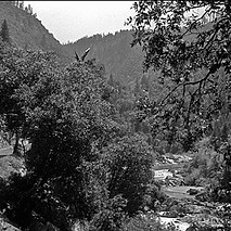 Yuba River 2