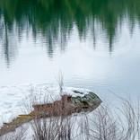 Winter at Paradise Lake I