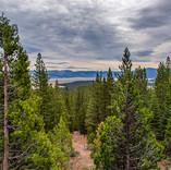 Sierra Valley View