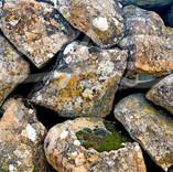 Rocks in The Wall