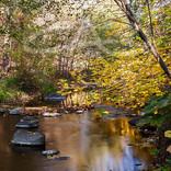 Fall Beauty on Rock Creek