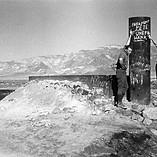 Desert Graffiti