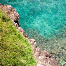 Honolua Bay Cliff View