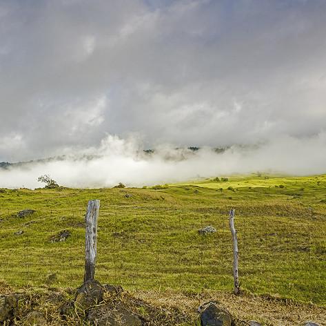 Cloudy Hillside