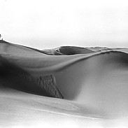 Southern California Sand Dunes 2